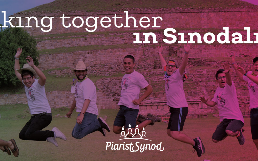 Walking Together in Sinodality